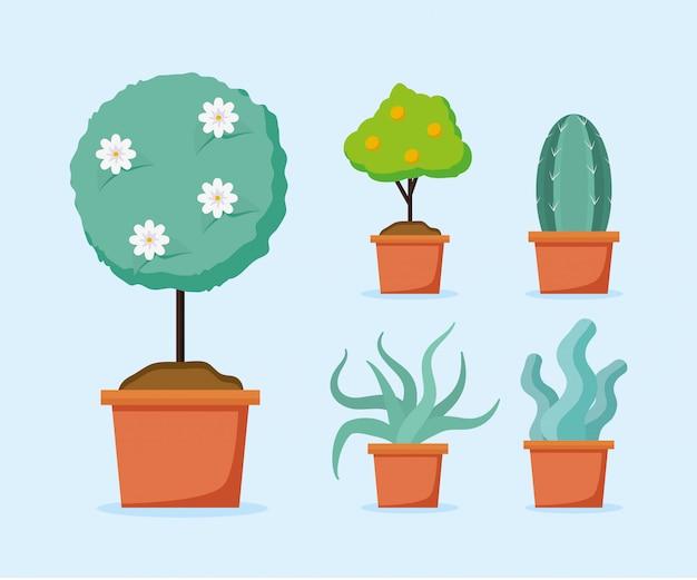 Pflanzen in töpfen Kostenlosen Vektoren