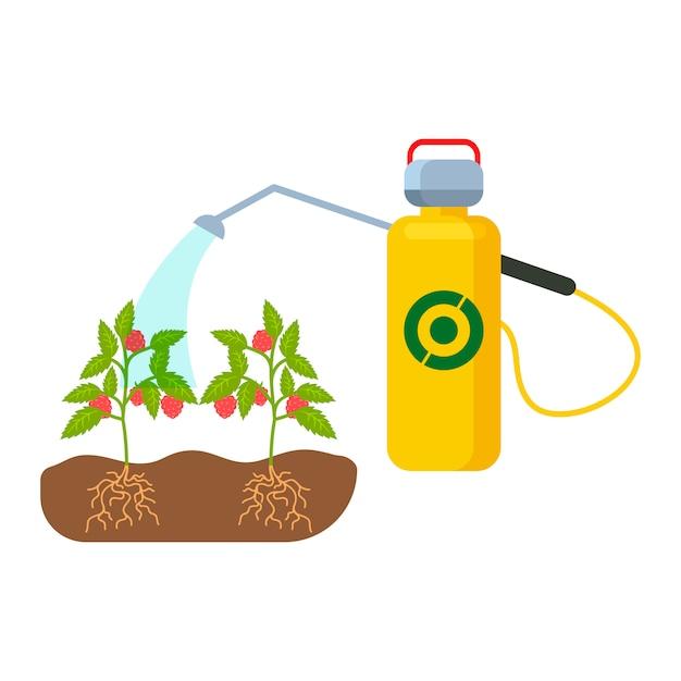 Pflanzen, sprösslinge, die farbvektor-illustration wässern Premium Vektoren
