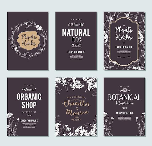 Pflanzen und kräuter banner gesetzt. element für design oder einladungskarte Kostenlosen Vektoren