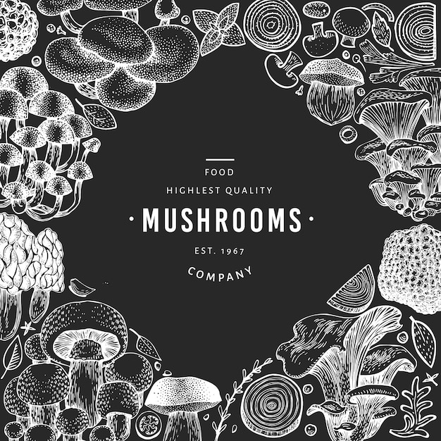 Pilz-vorlage. hand gezeichnete lebensmittelillustration auf kreidebrett. Premium Vektoren