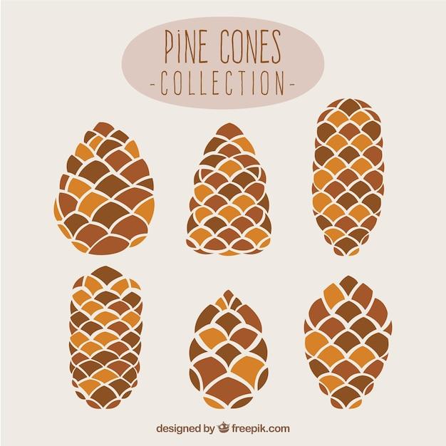 Pine cone-sammlung Kostenlosen Vektoren