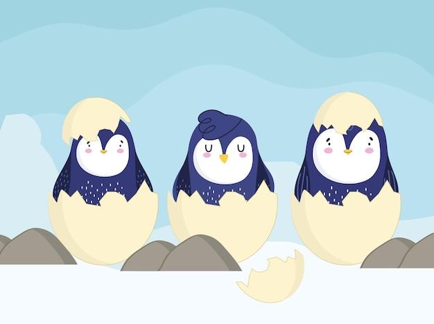 Pinguine auf eierschalenkarikatur Premium Vektoren