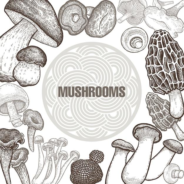 Plakat mit varianten von pilzen. Premium Vektoren