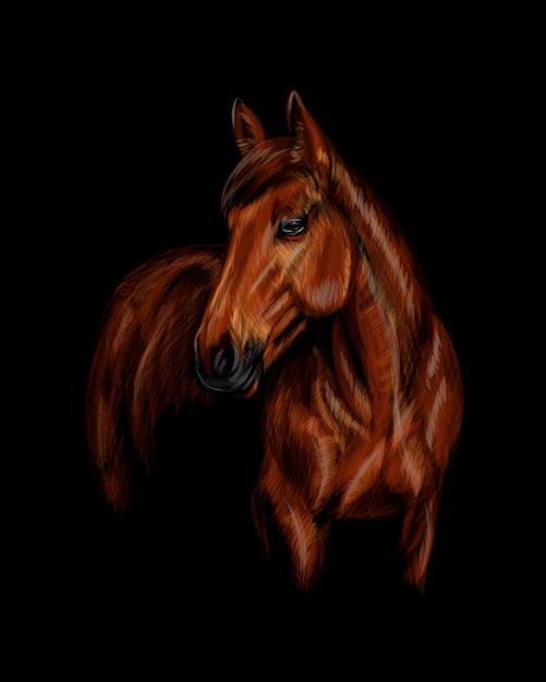 Porträt des pferdes auf dem schwarzen hintergrund. illustration von farben Premium Vektoren