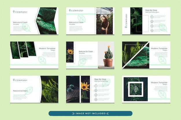 Präsentationsvorlagen-design in pastellgrün mit einem modernen, einfachen und professionellen stil, geeignet für die verwendung von umweltfreundlichen firmenpräsentationen, botanischen gärten und waldschutzkampagnen. Premium Vektoren