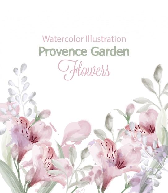 Provence blüht gartenaquarell Premium Vektoren