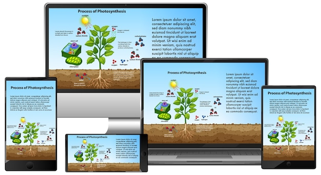 Prozess der photosynthese auf dem bildschirm elektronischer geräte Premium Vektoren