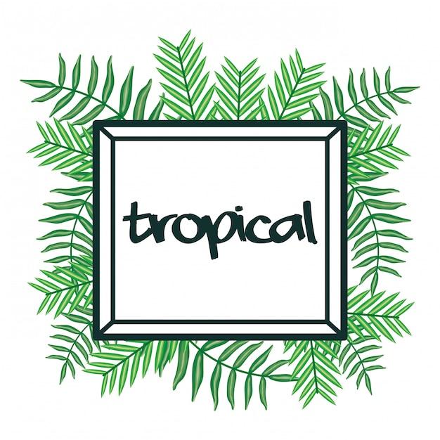 Quadratischer rahmen mit tropischen blättern Premium Vektoren