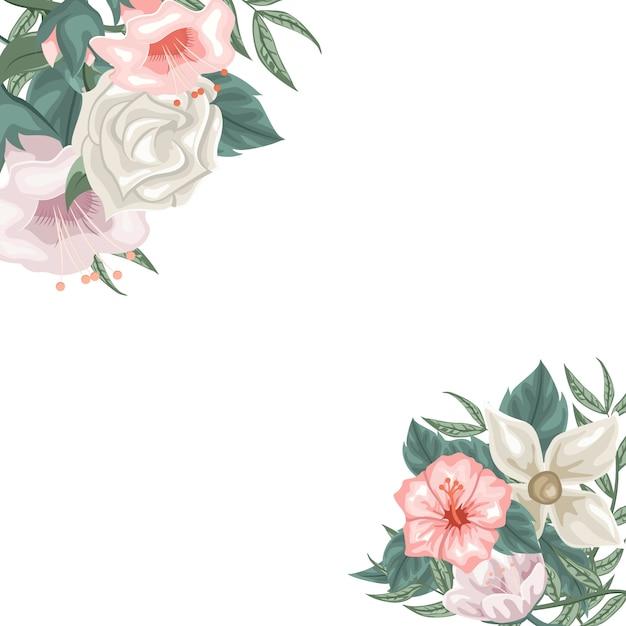 Rahmen von hibiscus jasmin und tulpen und rosen Premium Vektoren