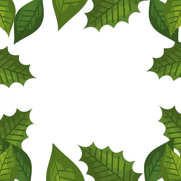 Rahmen von tropischen dekorativen blättern Kostenlosen Vektoren