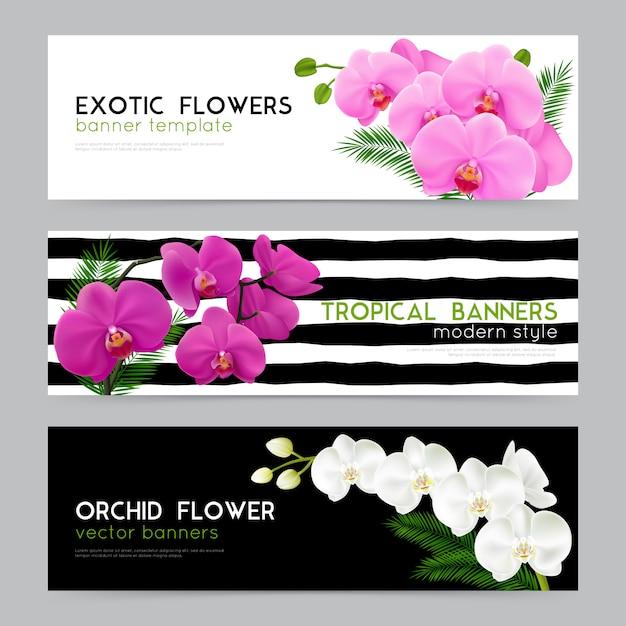Realistische banner der blühenden orchideen eingestellt Kostenlosen Vektoren