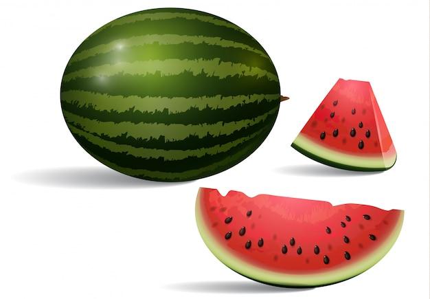 Realistische darstellung der wassermelone. nachtisch, frieden, scheibe. frucht-konzept. Kostenlosen Vektoren