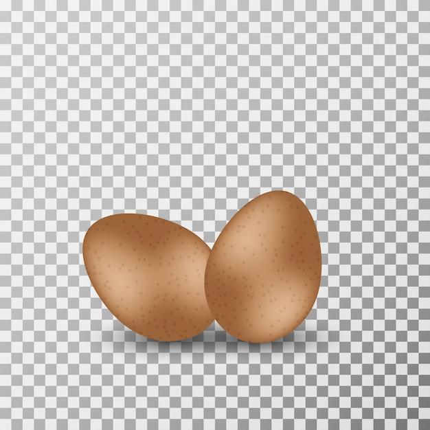 Realistische eier auf dem transparenten hintergrund vektor. Premium Vektoren