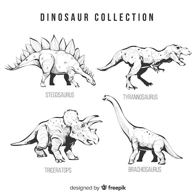 Realistische hand gezeichnete dinosauriersammlung Kostenlosen Vektoren