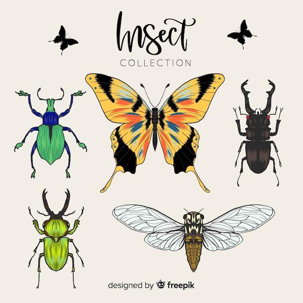 Realistische insektensammlung Kostenlosen Vektoren