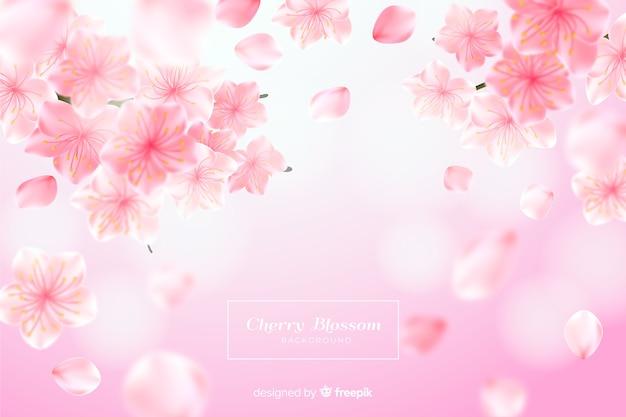 Realistischer kirschblütenhintergrund Kostenlosen Vektoren