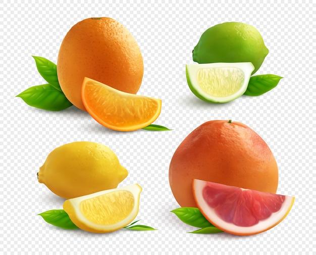 Realistischer satz der zitrusfrüchte mit lyme-orangen-zitrone und grapefruit lokalisiert auf transparentem hintergrund Kostenlosen Vektoren