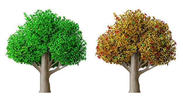 Realistischer vektorbaumsommer und -herbst Premium Vektoren