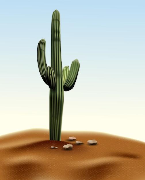 Realistischer wüstenkaktus carnegia-riese. anlage der wüste unter sand und felsen im lebensraum. Premium Vektoren