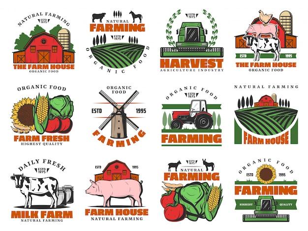 Rinderfarm, landwirtschaft landwirtschaft lebensmittel Premium Vektoren