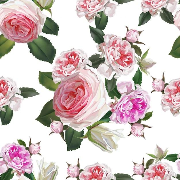 Rosa blume der englischen rosen, schöne natürliche blumen Premium Vektoren