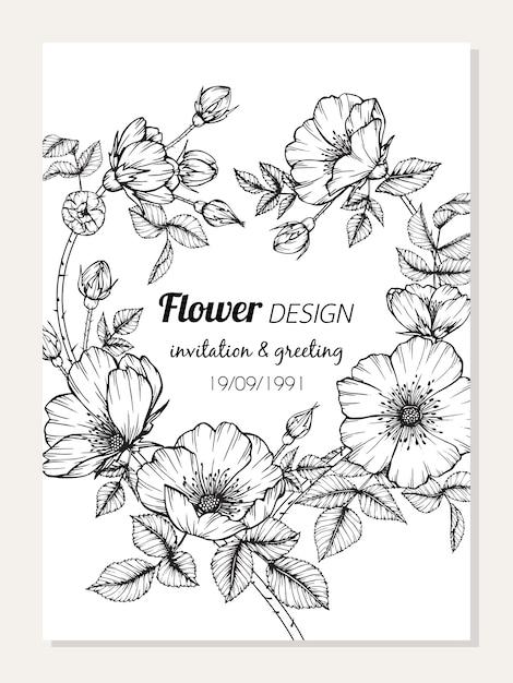 Rosa canina Blumenrahmen-Zeichnungsillustration | Download der ...
