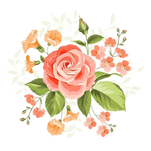Rosa schöne rosenillustration Kostenlosen Vektoren
