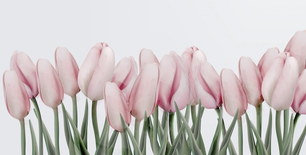 Rosa tulpengeburtstagseinladungskarte Premium Vektoren