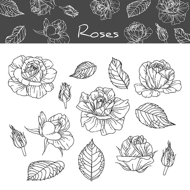 Fantastisch Farbseiten Von Blumen Und Rosen Bilder - Entry Level ...