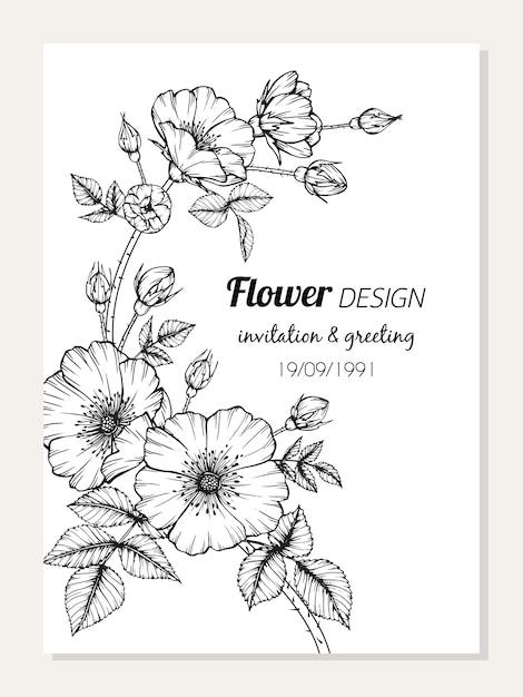 Rosen-Blumenrahmen-Zeichnungsillustration. | Download der Premium Vektor