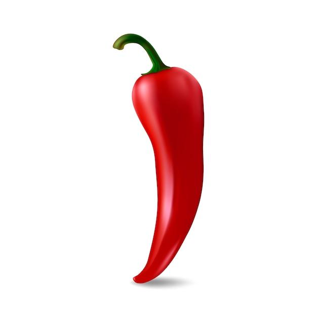 Rote chilischote Premium Vektoren