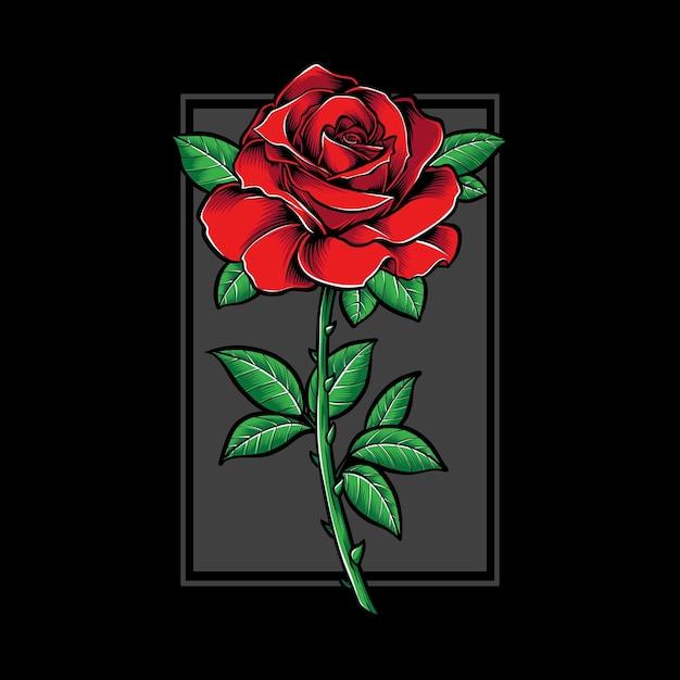 Rote rose und illustration Premium Vektoren
