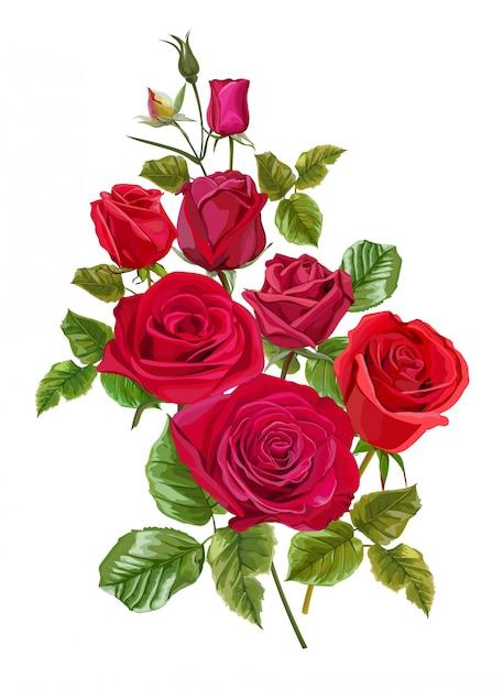 Rotrosenblume für grußkarten und einladungen der hochzeit Premium Vektoren