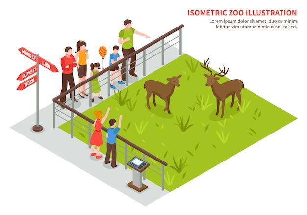 Rotwild in der zoozusammensetzung Kostenlosen Vektoren