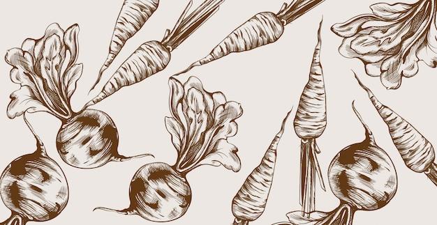 Rüben- und karottenlinie kunst. gemüse muster frische ernten Premium Vektoren