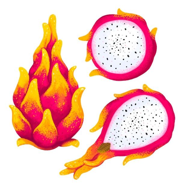 Saftige illustration einer exotischen pitahaya-frucht in drei winkeln, geschnittenes pitahaya, drachenherz Premium Vektoren