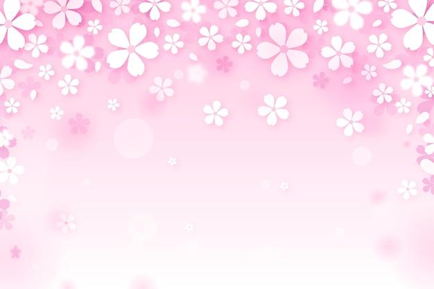 Sakura gradientenhintergrund Premium Vektoren