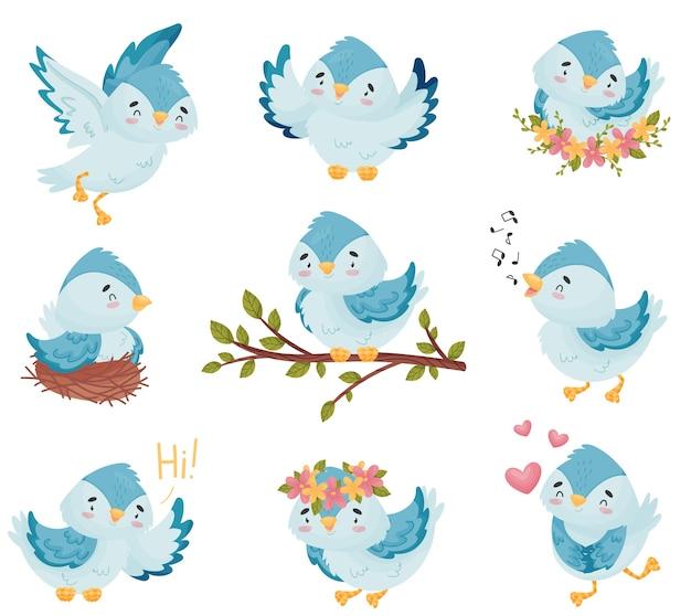Sammlung der blauen vögel der karikaturen Premium Vektoren