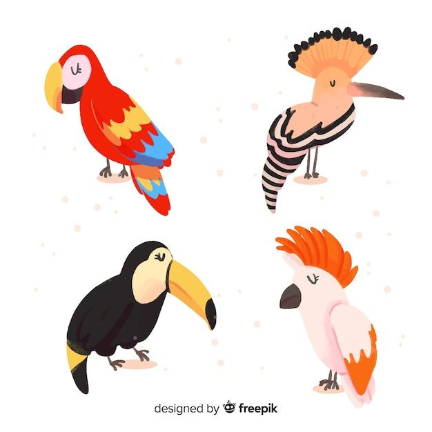 Sammlung des exotischen vogels des aquarells Kostenlosen Vektoren