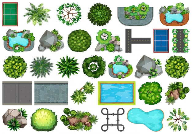 Sammlung themenorientierte gegenstände und pflanzenelemente der natur im freien Kostenlosen Vektoren