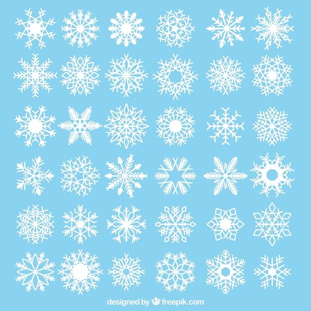 Sammlung von dekorativen schneeflocken Kostenlosen Vektoren