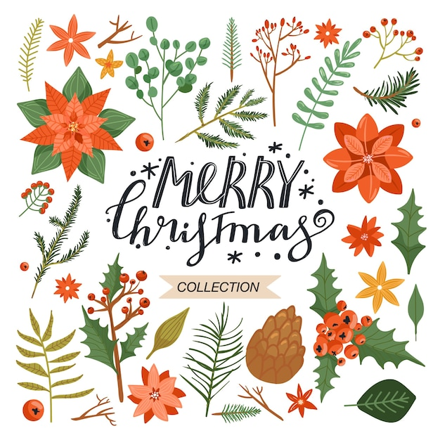 Sammlung von floralen weihnachtselementen. Premium Vektoren