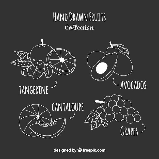 Sammlung von handgezeichneten früchten Kostenlosen Vektoren