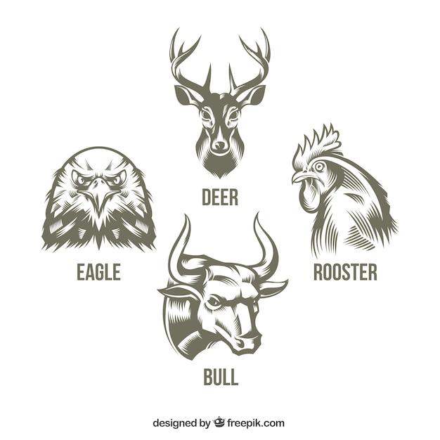 Sammlung von handgezeichneten tieren Kostenlosen Vektoren