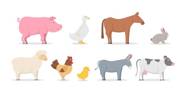 Sammlung von nutztieren und vögeln im trendigen flachen stil Premium Vektoren