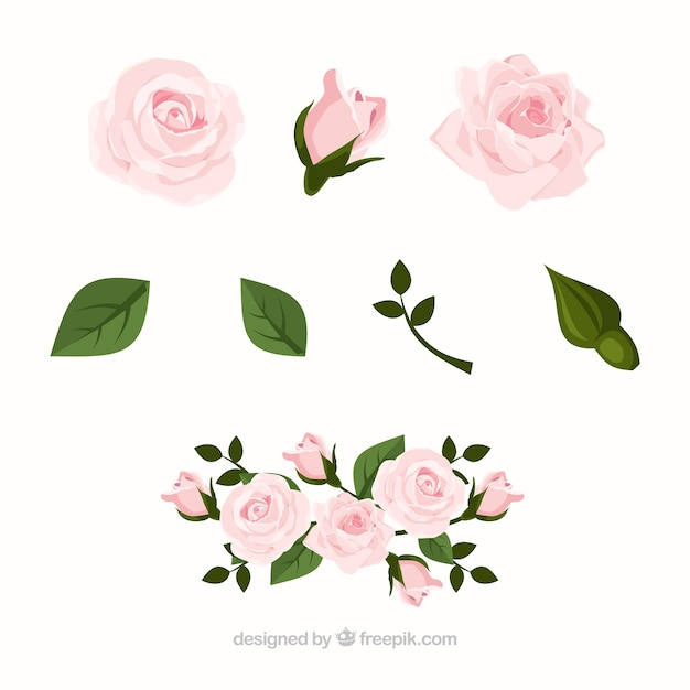 Sammlung von rosen in realistischen design Kostenlosen Vektoren