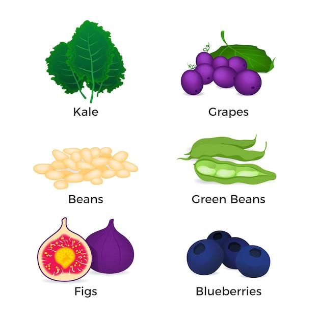 Sammlung von superfood Kostenlosen Vektoren