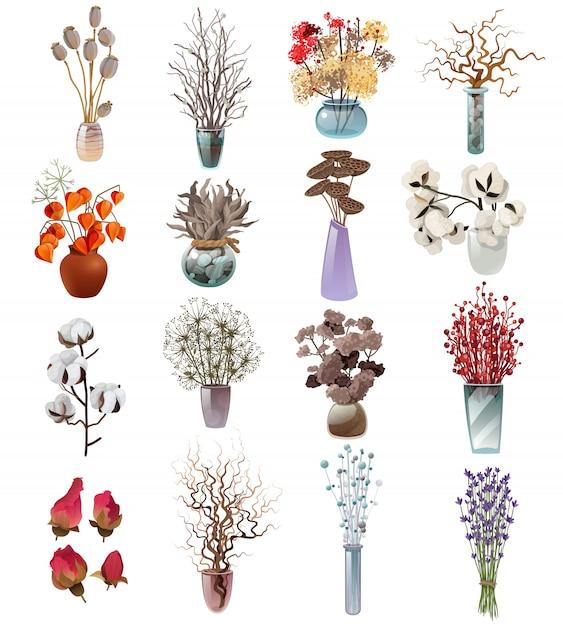 Sammlung von trockenen blumensträußen in vasen Premium Vektoren