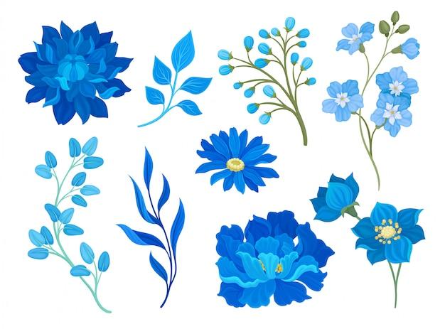Sammlung von zeichnungen von blauen blumen und blättern. illustration auf weißem hintergrund. Premium Vektoren