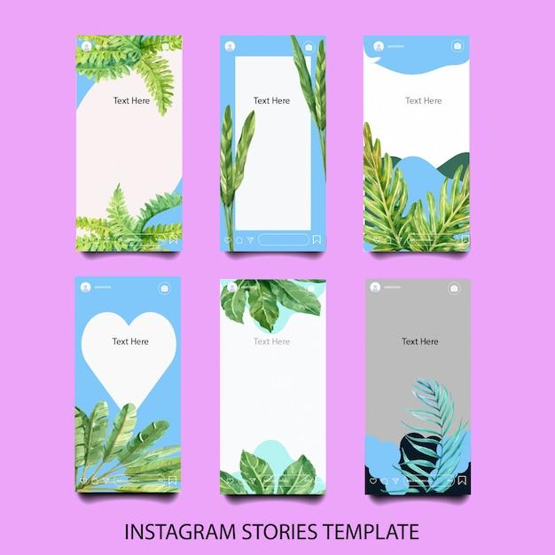 satz aquarell instagramvorlagen  kostenlose vektor